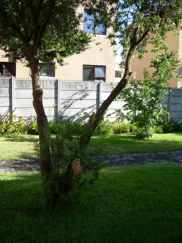 Property For Rent in Bellville, Bellville 1